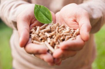 Czym jest biomasa i jakie ma zastosowania